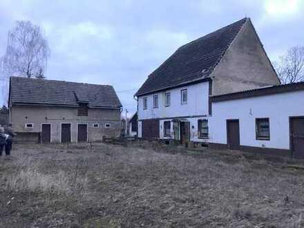 Bauernhof mit großem Grundstück am Stadtrand von Döbeln zu verkaufen