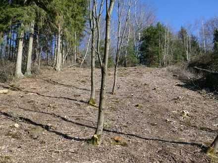 Voll erschlossenes Grundstück in Westausrichtung