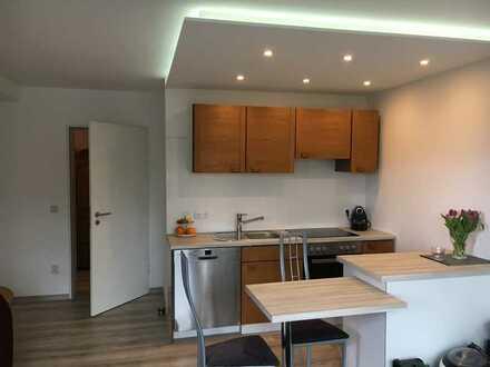 Renovierte attraktive 2-Zimmer-möblierte Erdgeschosswohnung mit EBK und Terrasse in Nagold