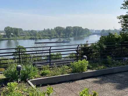 5 Zi. Kü. Bad mit großer Terrasse und Rheinblick in Mainz Oberstadt - Erstbezug nach Renovierung