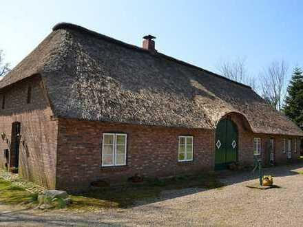 Bei Husum - Traumhaftes Anwesen mit Blick über die Südermarsch
