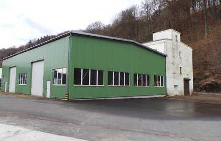 3 Lager-Werkstatthallen (1x mit Montagegrube&beheizt), 5000m² Freiflächen, A4-A14, Provisionsfrei