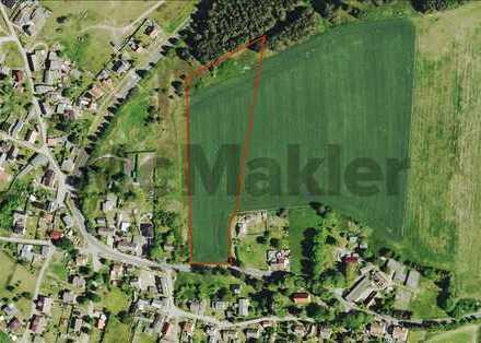 Wohnen und lange Ausritte genießen: Ca. 22.000 m² Grundstück auf Usedom
