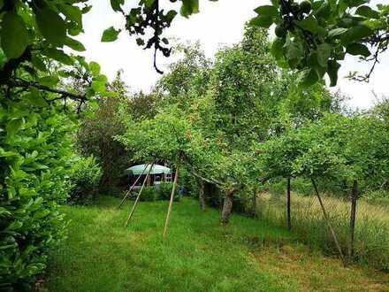WUNDERSCHÖNES Gartengrundstück in Beutelsbach - Schnait
