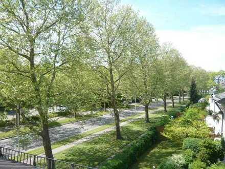 Top Wohnung mit EBK, neues Bad Terrasse - ruhige Lage sofort frei