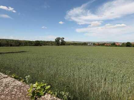 Bauland (unerschlossen) in bevorzugter Wohnlage der VG Leinigerland *ideal für Bauträger* RESERVIERT