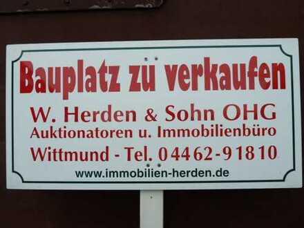 Bauplatz mit angrenzendem, zukaufbarem Weideland in Wittmund-Willen