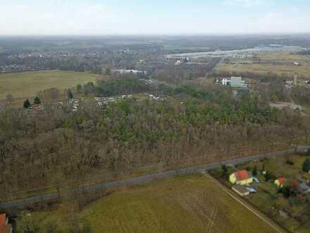 4.LIVE-AUKTION 2021: 0,6 ha Forstliegenschaft nordwestlich von Cottbus