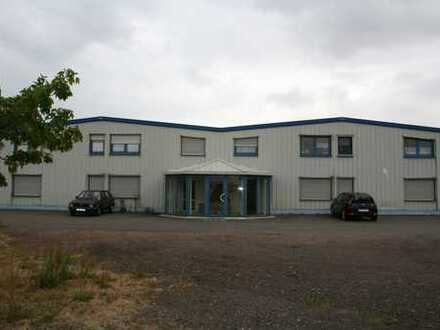 Große moderne Produktions-\ Lagerhalle mit Freifläche , Büro und Appartments