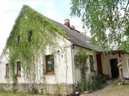 HORN IMMOBILIEN ++ ein schönes Einfamilienhaus mit großem Grundstück