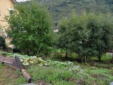 Hochwasserfreies Baugrundstück mit unverbaubarem Blick ins Moseltal