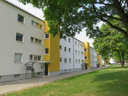 Familienfreundliche, modernisierte 4-Zimmer-Wohnung mit Terrasse und Garten zu vermieten