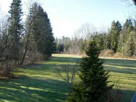 idyllisch gelegenes Haus mit schönem Grundstück in Ortsrandlage - Blick auf Wald und Wiese -