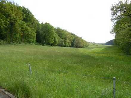Grundstücke in Landshut 38.471 m² - Landwirtschaftsflächen mit kleinerer Fläche Waldbestand