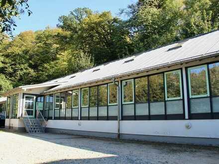 Wohnen und Arbeiten im umgebauten Loft ! Wohn- und Geschäftsimmobilie in Bensheim