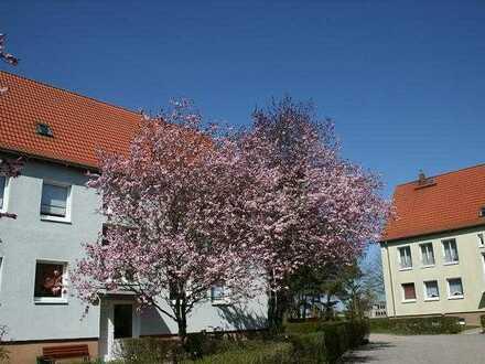 ***tolle Umgebung*** 3-Raum-Wohnung in Ventschow, Garten, DSL, See, Wald