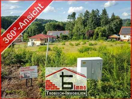 Bauplatz im Luftkurort Ludwigswinkel zu verkaufen | Trobisch-Immobilien