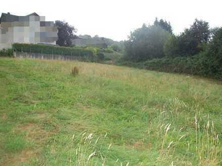 Großes Grundstück in Erbach zu verkaufen
