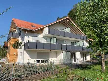 Neubau Erstbezug: 4-Zimmer Dachterrassenwohnung mit Panoramaausblick auf die Bergwelt!