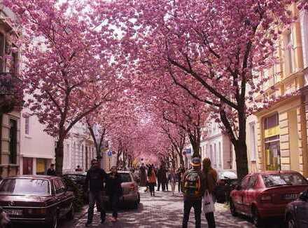 Clever anlegen in Bonn Innenstadt! MFH mit 5 Wohneinheiten Geschossaufstockung möglich!