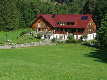 Schöne, helle 4,5 Zi.-DG-Wohnung in Alleinlage, Loggia !Erstbezug! ++Als Ferienimmobilie geeignet+