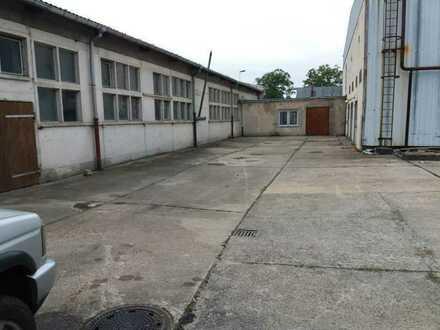 115 - 1200 m² Industriehalle Lagerhalle Gewerbehalle Werkstatt mit Büro am Rande von Spremberg