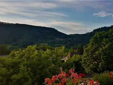 Traumblick - ruhige 3 Zimmer Wohnung in Badenweiler zu vermieten