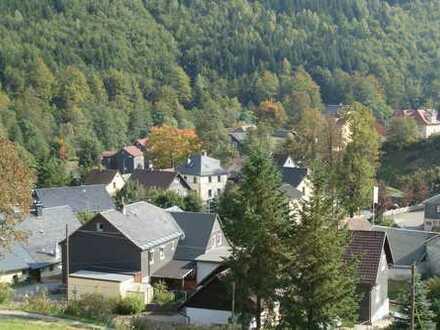 Zweifamilienhaus mit Einliegerwohnung, Keller, Garage, Doppelcarport, Balkon und Garten etc.