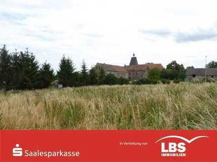 Eckgrundstück in Lodersleben!