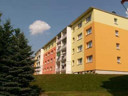 Wir RENOVIEREN Ihre zukünftige Wohnung für SIE !
