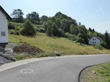 2 Baugrundstücke in Volkesfeld mit traumhafter Aussicht