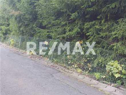 RE/MAX - Ruhig gelegenes Wochenendgrundstück (Baugrundstück)