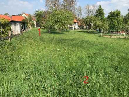 Baugrundstück mit anschließender Weide zu verkaufen