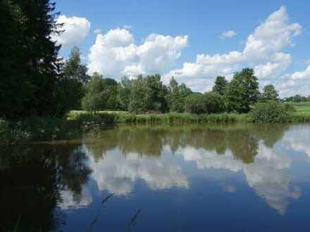 Fünf Fischteiche mit Wald auf einen Streich!