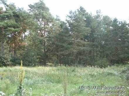 Ruhe geniessen - Grundstück in Ortsrandlage von Kaarßen in Waldnähe