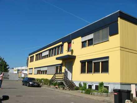 197 m² Bürofläche provisionsfrei zu vermieten