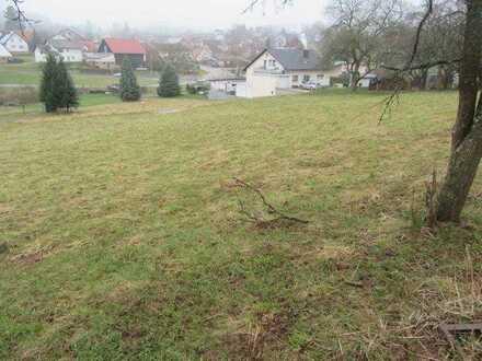 Schön gelegener Bauplatz - auch teilbar- mit ca. 1199 m² in Limbach OT im Odenwald