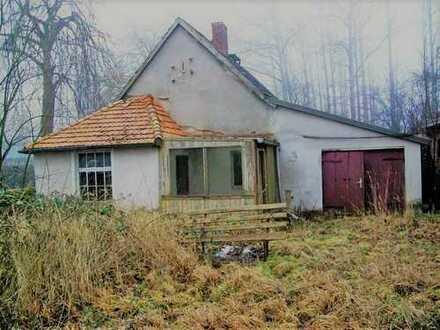 + Maklerhaus Stegemann + Sanierungsobjekt auf weitläufigem Grundstück