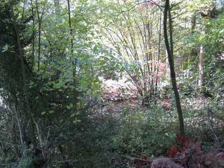Online-Auktion: Grundstück in Hanglage nahe der L 562 (O-434)