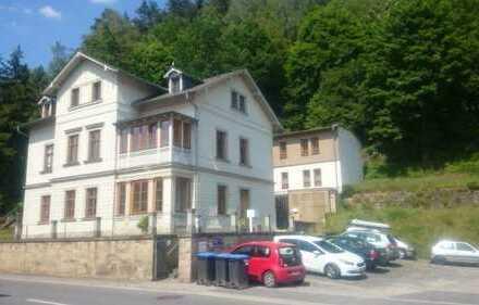 Modernisierte 2-Zimmer-Wohnung mit Wintergarten in Rathmannsdorf