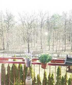 Loft in Lindenau für Tierliebhaber + eigener Garten!