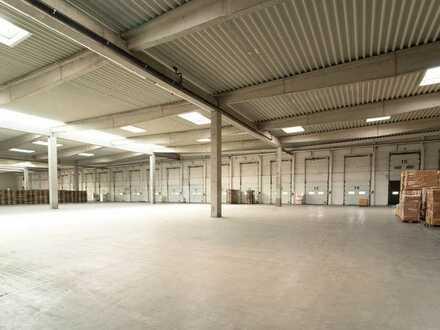 Lagerhalle mit Kühlfunktion   20 Rampentore   sofort verfügbar   RUHR REAL