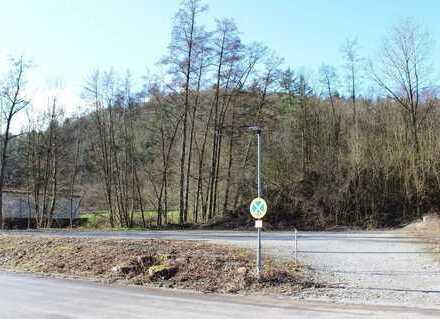 Neckargemünd: Attraktiver, voll erschlossener Bauplatz im Mischgebiet