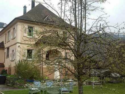 Schönes Haus mit neun Zimmern und großem Garten