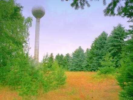 Vollversion Expose - Grundstück in Schwepnitz