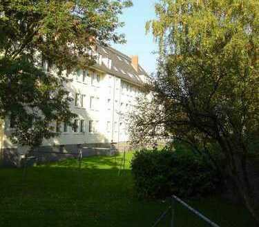 GROßE UND HELLE 3-ZIMMERWOHNUNG AB 01.07.2019 zu vermieten, DIREKT VOM EIGENTÜMER