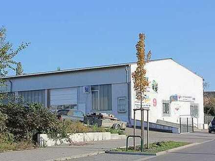 Vielseitig nutzbare Gewerbehalle NR1-Direkt vom Eigentümer- Provisionsfrei