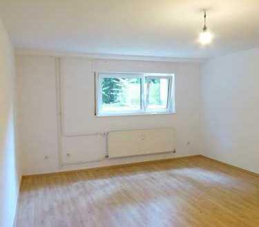 Niederrad : Gut geschnittenes 1-Zimmer-Apartment mit Parkettlaminatboden und kleiner Küche