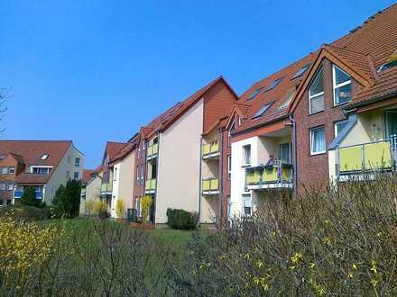 Schöne 2 Raum Wohnung in Müncheberg