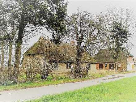 + Maklerhaus Stegemann + solides Reetdachhaus in Klein Bisdorf bei Greifswald